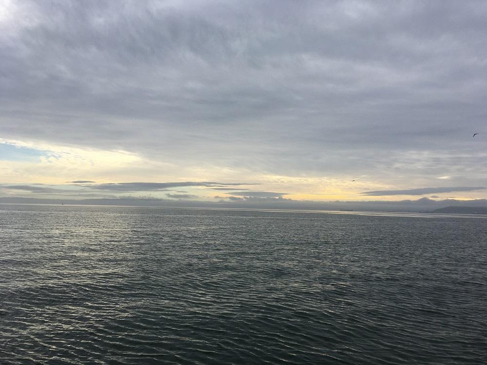 Name:  South Bay 010120.JPG Views: 64 Size:  246.8 KB
