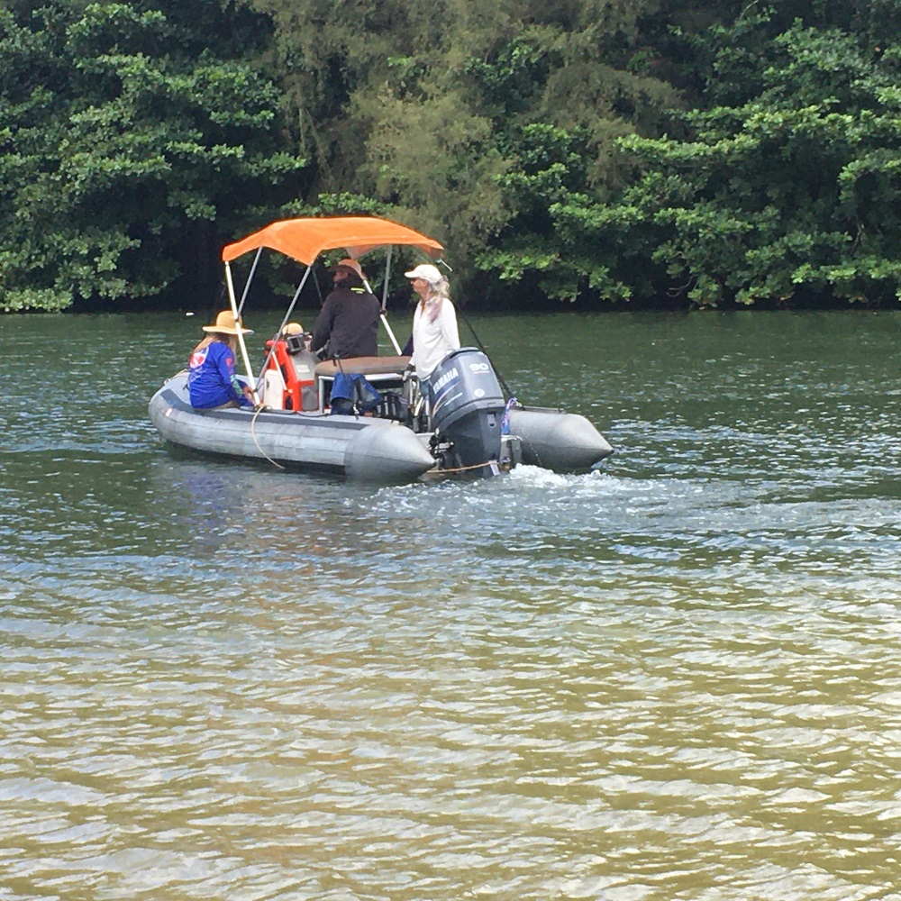 Name:  Sea Squirrel outbound on the Hanalei River.JPG Views: 491 Size:  443.0 KB