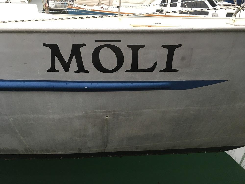 Name:  Moli.JPG Views: 235 Size:  195.2 KB