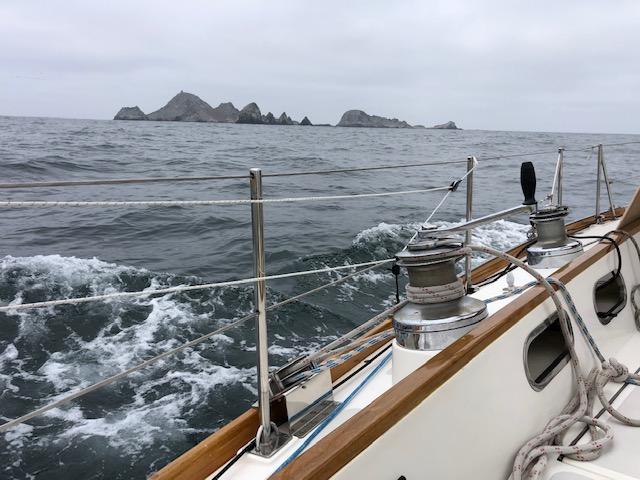 Name:  Sea Wisdom.JPG Views: 109 Size:  100.0 KB