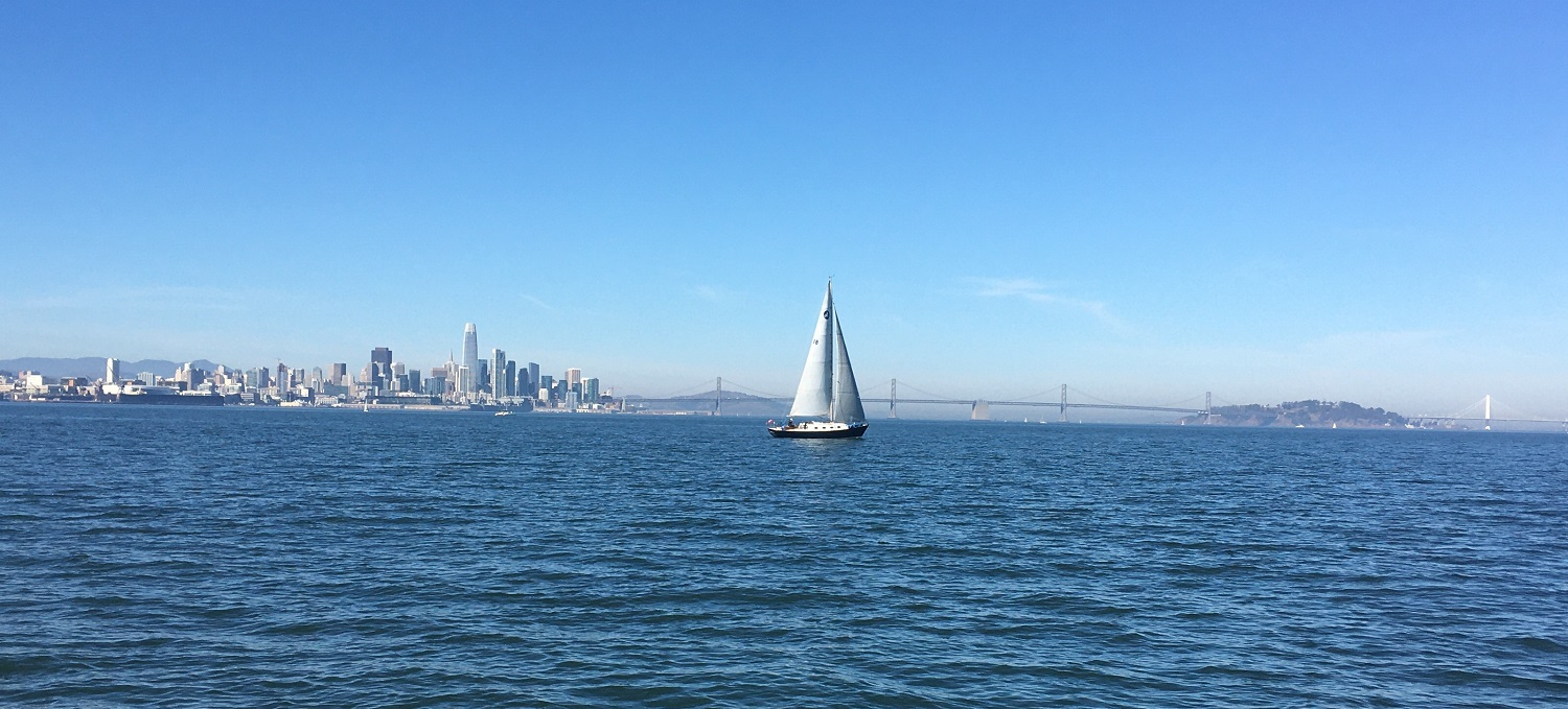 Name:  Surprise! against SF Skyline 111719 - Copy.JPG