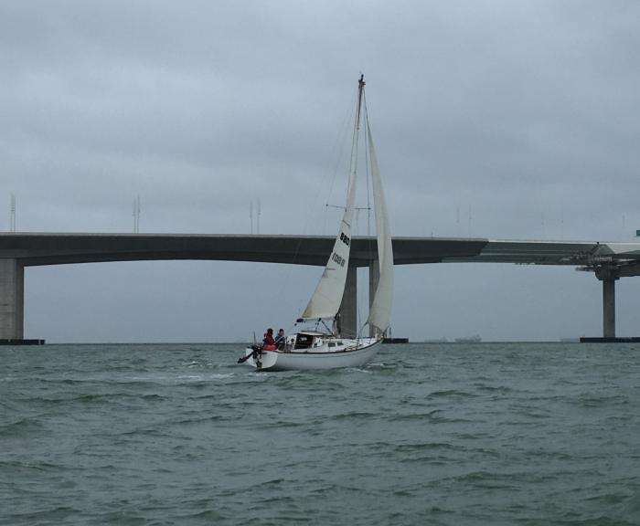 Name:  Ted Sailing Towards Bay Bridge.jpg Views: 297 Size:  33.2 KB