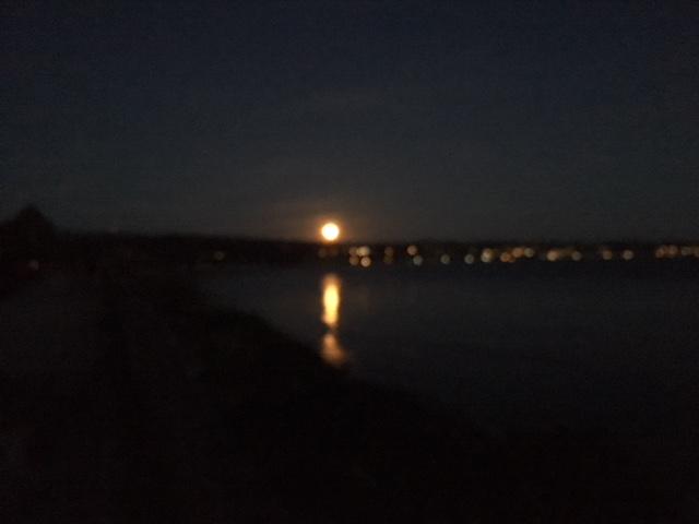 Name:  Full Moon.jpg Views: 297 Size:  56.4 KB