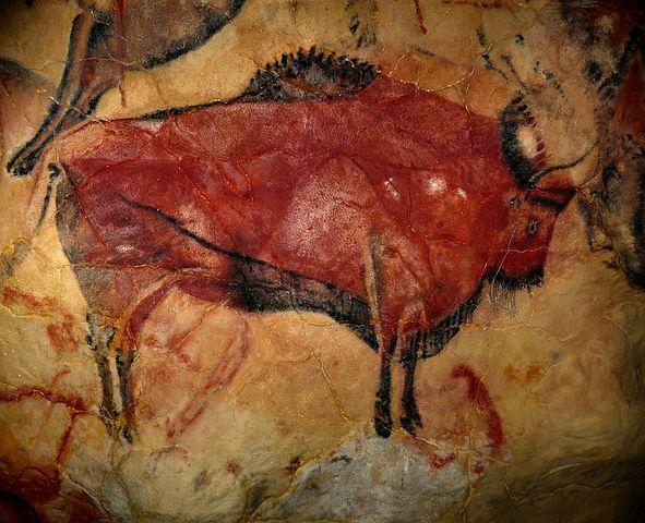 Name:  bison-1171794__480.jpg Views: 572 Size:  73.9 KB
