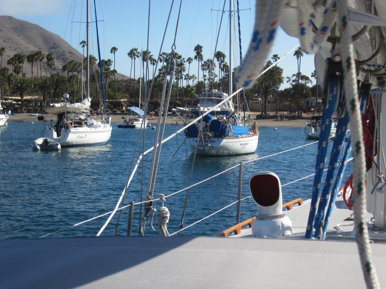 Name:  Dolfin Bill moored at Catalina Island.jpg
